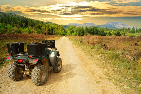 Buy a new ATV's with your remaining cash from selling your White Rock home