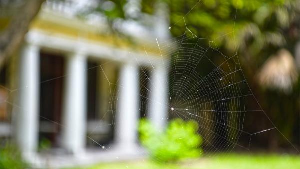 Avoid Foreclosure