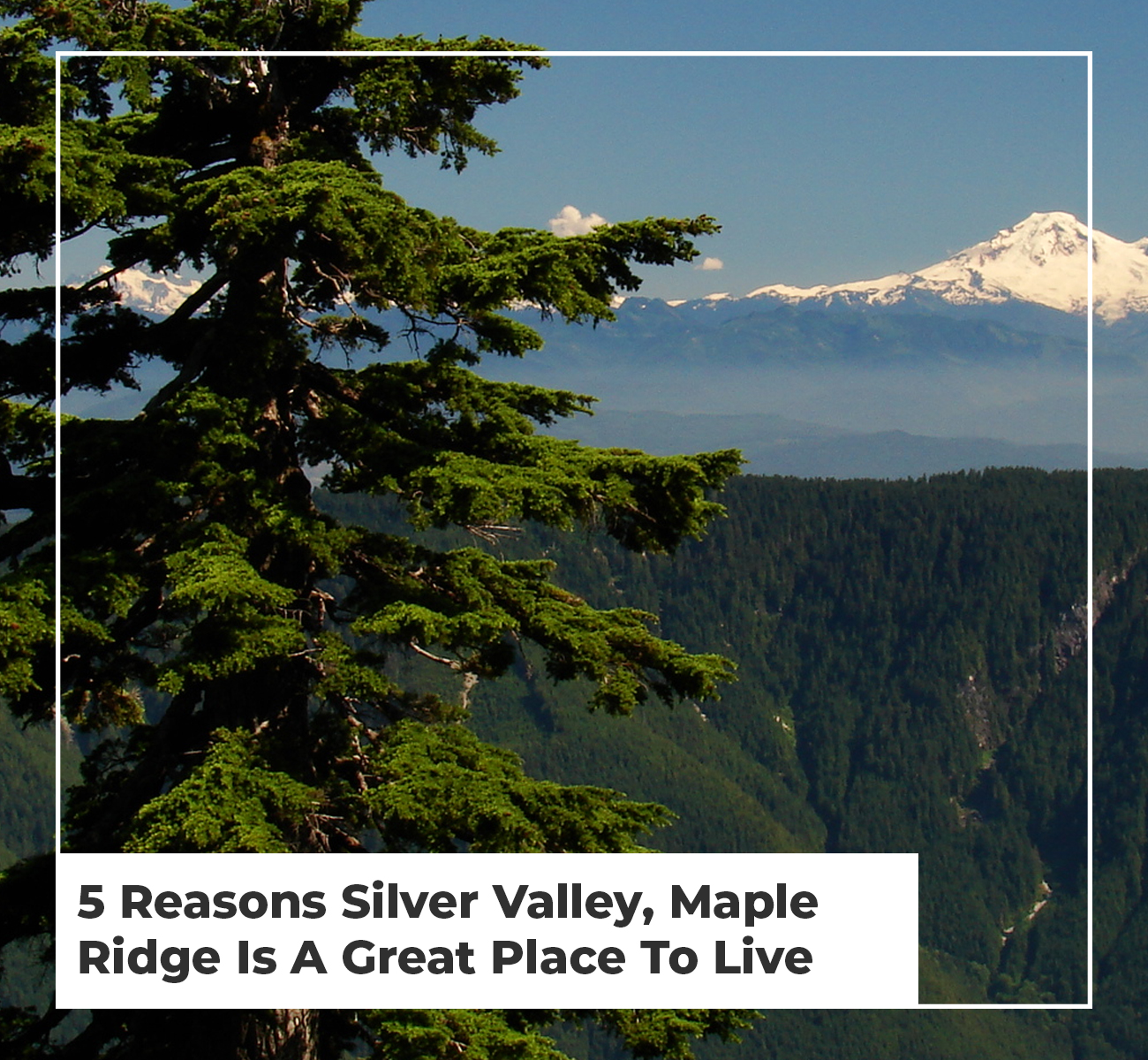 5 Reasons Silver Valley, Maple Ridge is a Great Place to Live