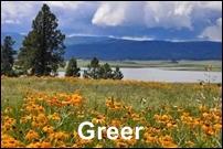 Greer Homes