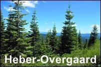 Heber-Overgaard Homes