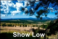 Show Low Homes for Sale