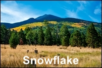 Snowflake Homes for Sale