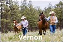 Vernon Homes for Sale
