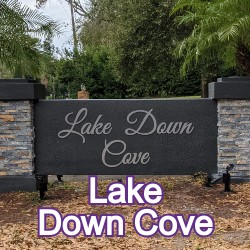 Lake Down Cove Windermere Homes for Sale