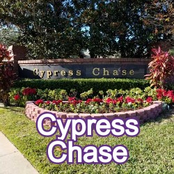 Cypress Chase Windermere Homes for Sale