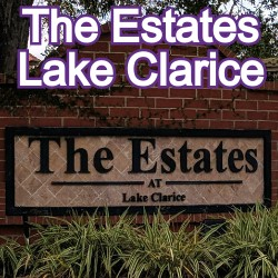 The Estates at Lake ClariceWindermere Homes for Sale