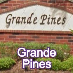 Grande Pines Windermere Homes for Sale