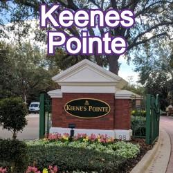 Keenes Pointe Windermere Homes for Sale