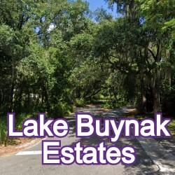 Lake Buynak Estates Windermere Homes for Sale