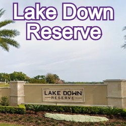 Lake Down Reserve Windermere Homes for Sale