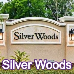 Silver Woods Windermere Homes for Sale