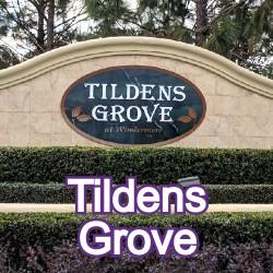 Tildens Grove Windermere Homes for Sale