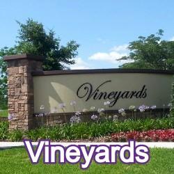 Vineyards Windermere Homes for Sale