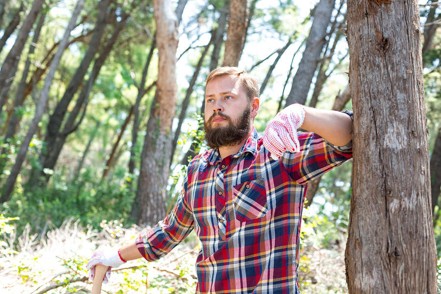 See the lumberjack show on Lake Delton real estate.