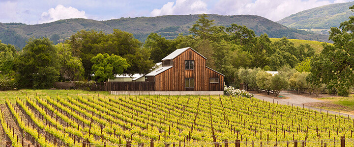 Properties with a Vineyard for Sale