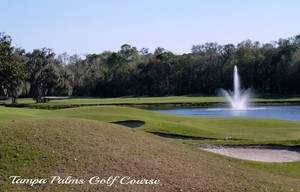 Tampa Palms Golf Course