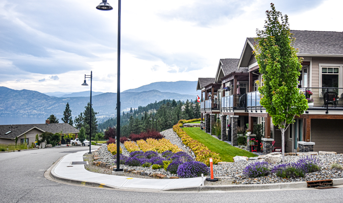 The Trails at Ponderosa Townhomes Street View